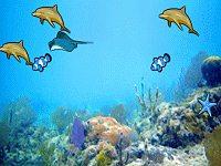 Aquatic Memory