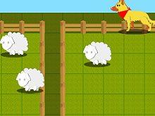 Sam the Farm Dog