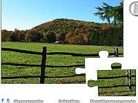 Jigsaw: Field