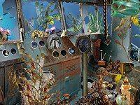 Starfish - Hidden Objects