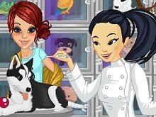 Veterinary Clinic Volunteer