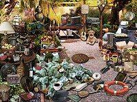Backyard of my Dreams