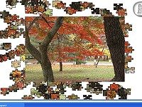 Jigsaw Autumn Colors