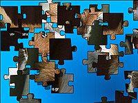 Jigsaw Fox