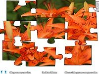 Jigsaw: Orange Lilies