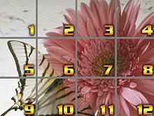 Puzzle Tag