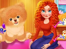 Merida Pet Care Saloon