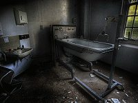 Asylum Survival Escape