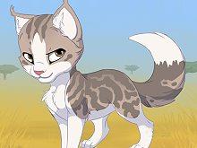 Kitten Maker 2